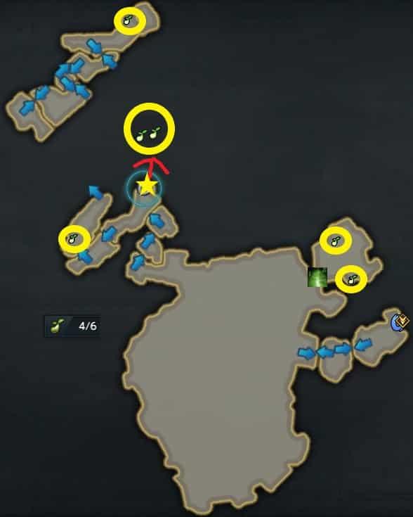 約束の島,モココのタネ